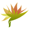 cropped-St_Clair_favicon-02.png